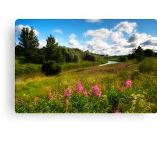 River bank's flower meadow Canvas Print