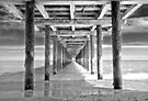 Under the pier by Stephen Knowles