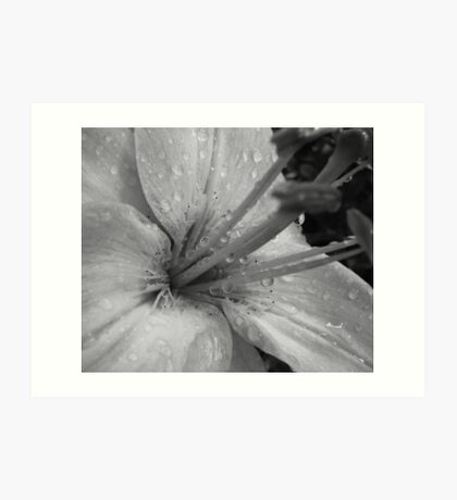 Beauty in B&W Art Print