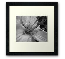 Beauty in B&W Framed Print