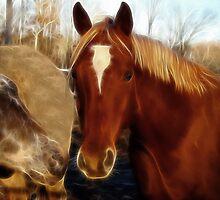 Cinnamon & Fox by Sandy Keeton