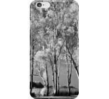 Where Spirits Whisper iPhone Case/Skin