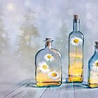 Summer in a bottle by Veikko  Suikkanen