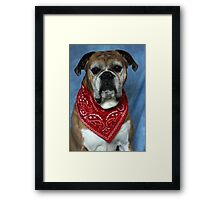 Sally  with her Bandana Framed Print