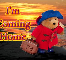 I'm Coming Home by DonDavisUK