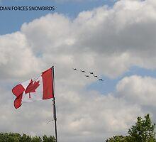 Canadian Forces Snowbirds by Lynda   McDonald