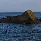 Rock Sea Creature by HeavenOnEarth
