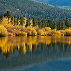 Aspen reflections by John Weakly