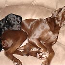 """""""Mother & Daughter Resting"""" by tawaslake"""