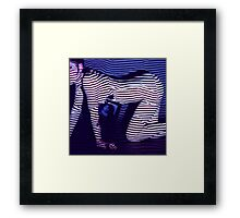 zebra daze Framed Print