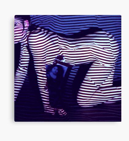 zebra daze Canvas Print