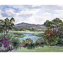 Rosevears Vineyard in Tasmania, Australia Photographic Print