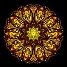 Autumn Star by owlspook