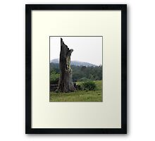 Once apon a time Framed Print