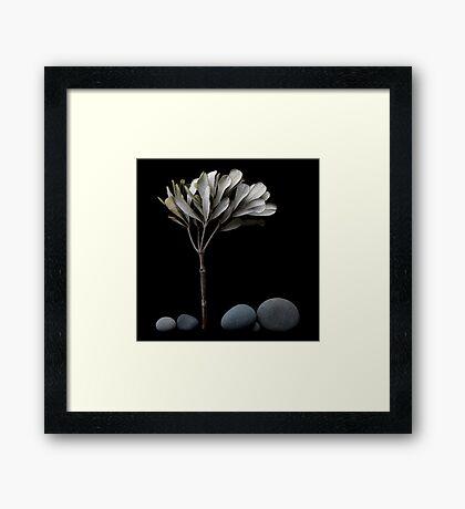 Little Landscape Framed Print