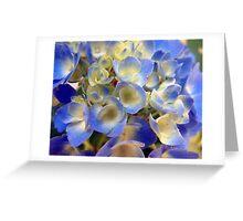 Heavenly Blues Greeting Card