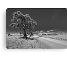 Bonnie Parker Road Canvas Print