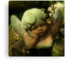 Angel In The Garden ~ Part One Canvas Print