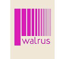 Walrus Fucsia Doppler Photographic Print