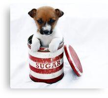 Sugar Belle Canvas Print