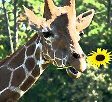 Sunflower Giraffe  by PJDesigns