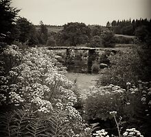Clapper Bridge 2 by graham1
