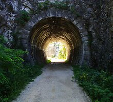 Tunnel in Val Rosandra by Rasevic