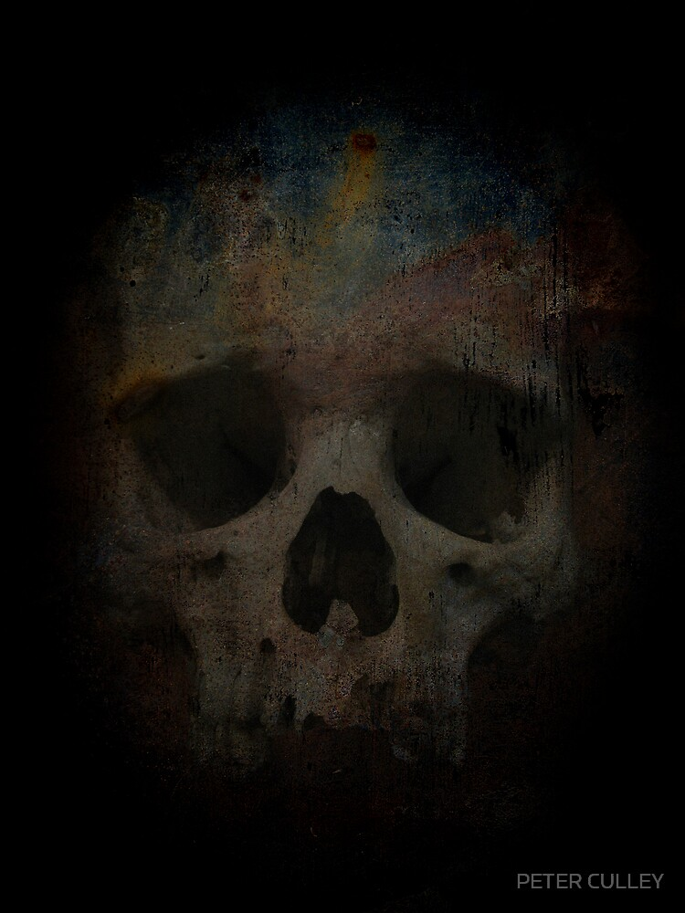 Skull 002 by PETER CULLEY