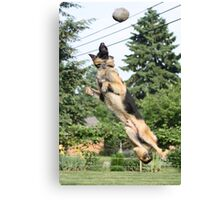 Training for the Superbowl Canvas Print