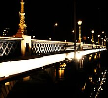 Queens Bridge Belfast by blueguitarman