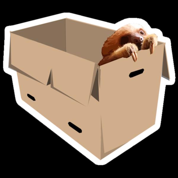 Sloth in a box by David Cumming