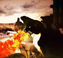 "Fire-Breathing Dragon Cat - ""Dominus Inferni"" by TaraFlyPhotos"