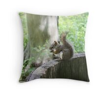 Pleasssse take my picture Throw Pillow