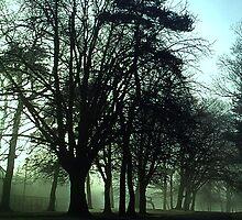 The Green Mist by blueguitarman