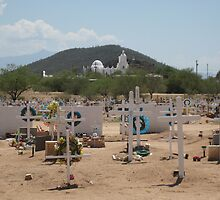 San Xavier from the Cemetery by Michael Cohen