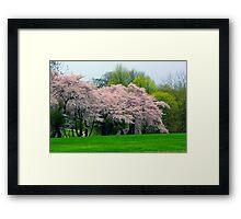 Springtime in New York Framed Print