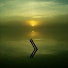 Aqua Mist - Lake Curlew, NSW by Gregory McInnes