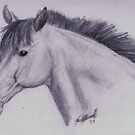 Sketch of Horse by Felicity Deverell