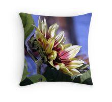 Fly Admiring Sunflower Throw Pillow