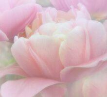 Pink Paradise by EbyArts
