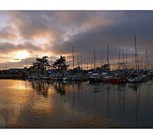Harbor Night by shell4art