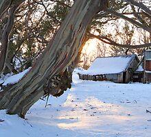 Wallace Hut, Falls Creek, Australia by Michael Boniwell