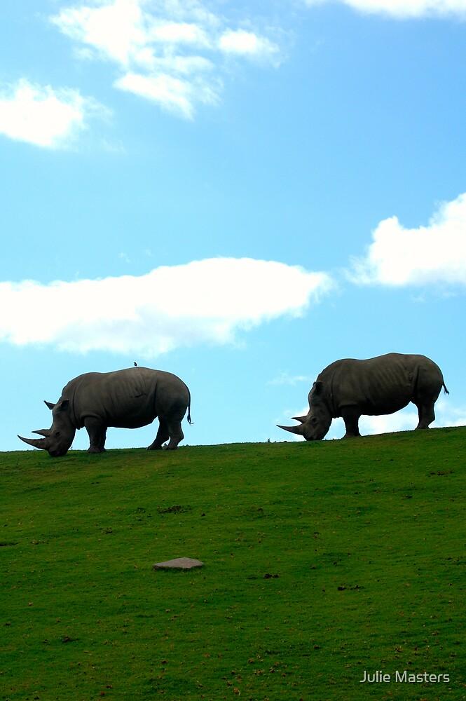 Wild Animal Park by Julie Moore