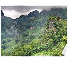Karst landscape, Thailand Poster