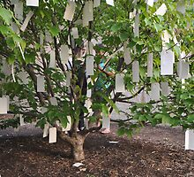 The Wishing Tree by Yoko Ono by Matsumoto