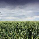 Wheat Field and Pylon by naffarts