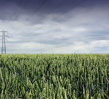 Wheat Field and Pylon by naffarts