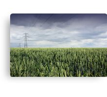 Wheat Field and Pylon Canvas Print