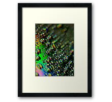 Water Drops - Rainbow Colors Framed Print
