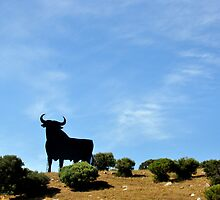 Bienvenidos in Andalucia! - Welcome in Andalusia! by Daniela Cifarelli